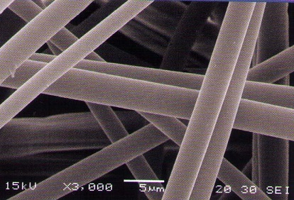 PP-membrane-electron-microscopic-photo.jpg