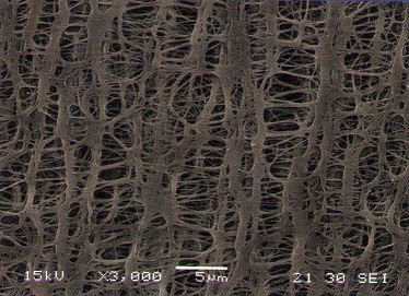 Electron-Microscopic-Photo-of-Hydrophilic-PTFE-Membrane.jpg