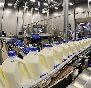 Procedure for Milk Processing
